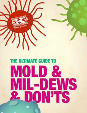 Killingsworth-mold-and-mildews-and-donts-content-offer-image